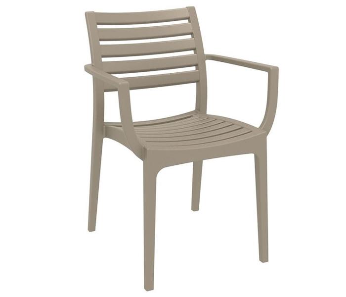 Zeus Poly Arm Chair