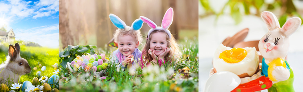 The Easter Bunny: Would You Lie?