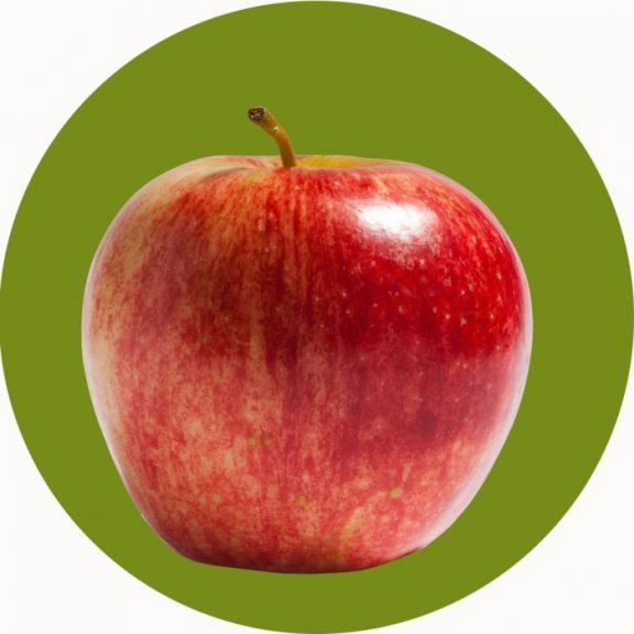 Apple Circular Mat