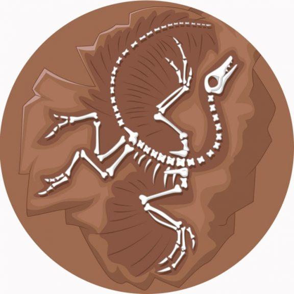 Archaeopteryx Circular Mat
