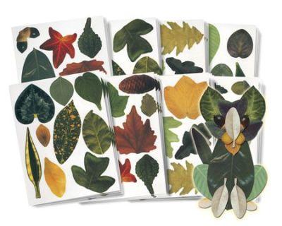 Athena Crafty Leaves