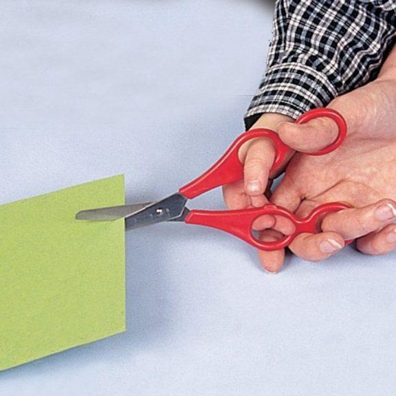 Dual Control Training Scissor