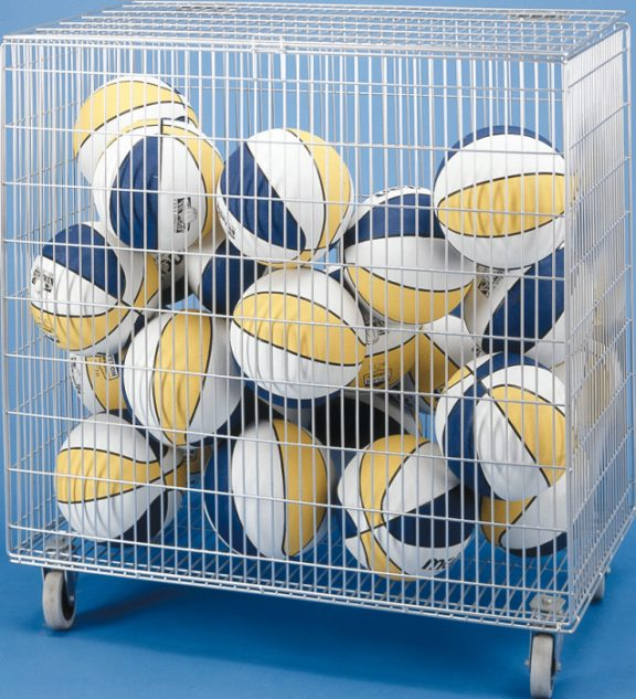 Dynamo Ball Carrier