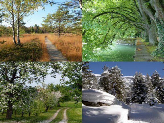Four Seasons Outdoor Playmat