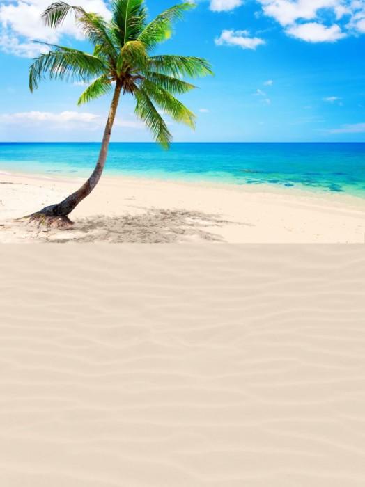Giant Desert Island Playmat